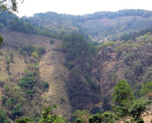 Outcrop from a distance on the La Chorrora Property.